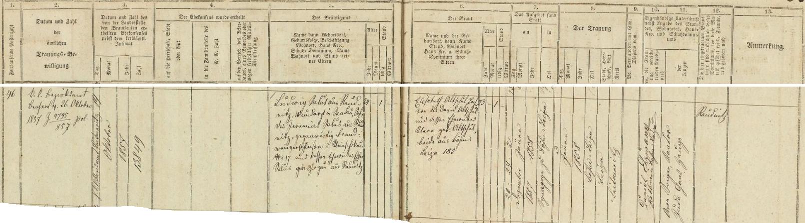 """Záznam českolipské židovské matriky vypovídá o zdejší svatbě jeho rodičů dne 3. ledna roku 1858 - čtyřiadvacetiletý ženich Ludwig Salus z Roudnice, lékař v Žandově, byl synem Jaromíra Saluse z Roudnice, nyní prodejce kořalky (zde psáno """"Brandweinverschleisser"""") v Malém Šachově (dnes část obce Šachov v okr. Děčín) čp. 17, a jeho ženy Esther, roz. Glogauové z Roudnice, nevěsta Elisabeth byla pak dcerou Davida Altschula a jeho ženy Klary, roz. Altschulové, obou z České Lípy čp. 185 - svědky při svatebním obřadu, který konal českolipský rabín Daniel Ehrmann, byli kantor Aron Singer a s ním Juda Gans"""