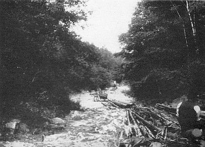 Vory v Novohradských horách na vzácném snímku z archívu Stanislava Chábery