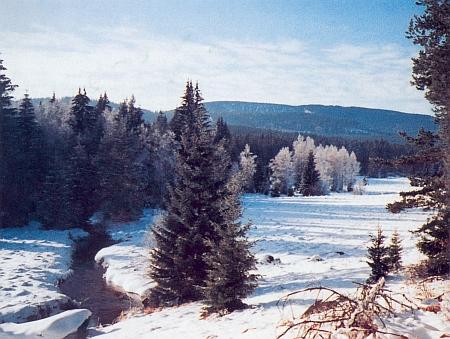 Jezerní potok v Jelení s pozadím skalní stěny nad Plešným jezerem