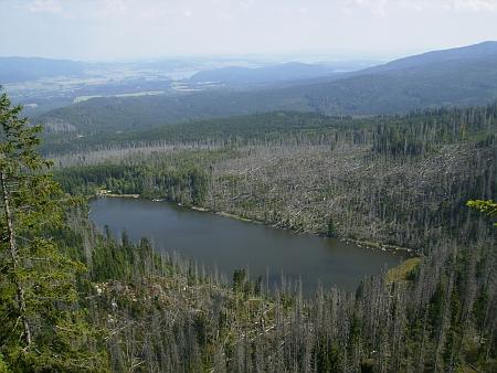 Plešné jezero mezi zničenými lesy a Stifterův pomník v roce 2013