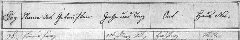 Záznam křestní matriky i její index stvrzují, že se narodil 30. března 1856 (a zemřel téhož dne a měsíce 81 let nato) otci Georgu Saumerovi (synu chalupníka v Hiršperkách čp. 19 Josefa Saumera a jeho ženy Veroniky, roz. Oberburgerové z hornorakouské obce Ulrichsberg) a matce Marii Anně, dceři Johanna Kunzela ze Záhvozdí (Hintring) čp. 10 a Theresie, roz. Gruberové, ze dnes zaniklé samoty Raschkowald (patřící kdysi k obci Nová Pec)