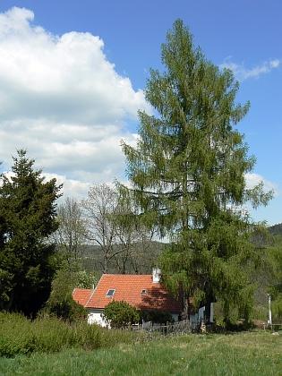 Dva snímky z Frantol byly pořízeny v roce 2010