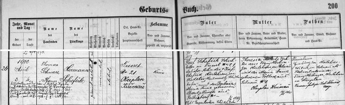 Podle záznamu v křestní matrice farní obce České Žleby narodil se ve Stožci tamnímu učiteli Josefu Schefčíkovi (i jeho otec Josef Schefčík, příjmení psáno takto u obou s háčkem a čárkou, byl učitelem, ale ve Stodůlkách u Hartmanic, matka Maria Anna byla roz. Meerstallingerová z Popelné /Reckerberg/) a jeho ženě Theresii, dceři želnavského řídícího učitele Franze Herbingera a jeho manželky Anny, roz. Pollakové, také ze Želnavy - dodatečný přípis informuje o vystoupení Hermanna Schefczika z římskokatolické církve ve Vídni roku 1924
