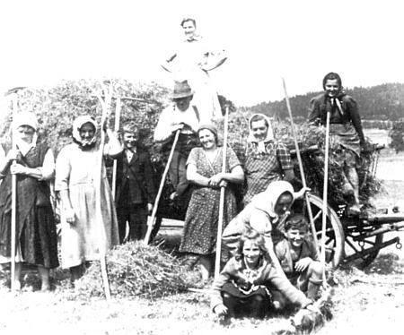 Senoseč 1942 na Stögerově Huti, kdy muži byli vlastně všichni na frontě