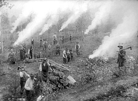 Práce v lese při Stögerově Huti na snímku Josefa Seidela, pořízeném 26. prosince roku 1923