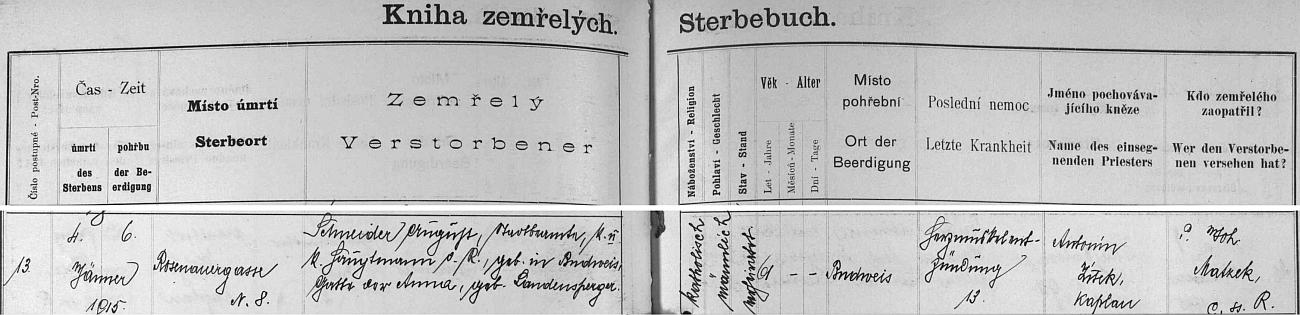 """Zápis o úmrtí v českobudějovické """"Knize zemřelých"""" ho označuje vedle vojenské hodnosti i jako """"městského úředníka"""", """"poslední nemoc"""" je tu označena výrazem """"Herzmuskelentzündung"""", tj. zánět srdečního svalu"""