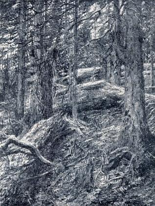 Dvě černobílé reprodukce jeho maleb s názvy Plešné jezero vpředjaří a Okraj pralesa na Boubíně