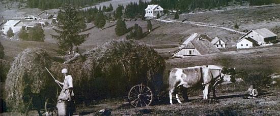 Proslulý hamr v Hraběcí Huti, v provozu rovných sto let od roku 1846 do odsunu, a Hraběcí Huť na celkovém záběru z někdejška
