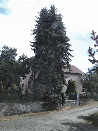 Za stromy ukrytý rodinný dům čp. 1258 v dnešní tachovské Americké ulici