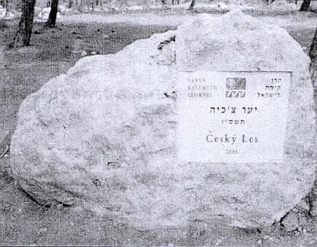V únoru 2009 se pod jeho patronací jako ministra zahraničí České republiky konala mise do Negevské pouště v Izraeli, spojená svysazováním stromů - pamětní kámen Český les připomíná, že je tu vysadili už i prezident Klaus a premiér Topolánek