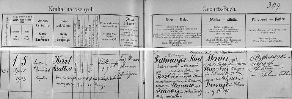Záznam o jeho narození na adrese Schillergasse Nr. 7 (dnešní Lipenská ulice) a křtu, při němž mu byl kmotrem otec spisovatele Karla Franze Leppy, v českobudějovické matrice, který obsahuje i pozdější přípis o jeho svatbě a svědčí také o příbuzenských vazbách po otci i matce s trhovosvinenskou rodinou Stráských