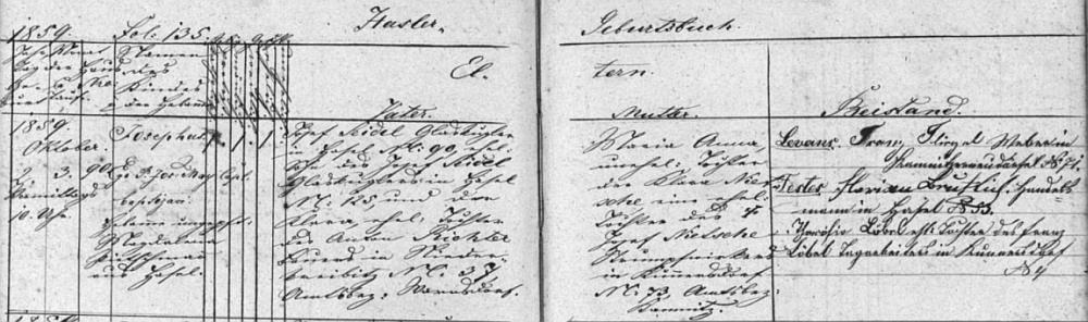 """Podle tohoto záznamu """"Hasler Geburtsbuch"""", tj. knihy narozených v Lísce, narodil se tu v domě čp. 90 dne 2. října roku 1859 v 10 hodin dopoledne a byl den nato kaplanem Josefem Mayerem v děkanském kostele sv. Jakuba vČeské Kamenici (Böhmisch Kamnitz) i pokřtěn - otec dítěte Josef Seidel, kulič skla, bytem v Lísce čp. 90, byl synem kuliče skla Josefa Seidela a jeho ženy Klary, dcery Antona Richtera, rolníka v Dolní Chřibské (Unterkreibitz) čp. 37, chlapcova matka Maria Anna byla nemanželskou dcerou Klary Nietscheové, manželské dcery Josefa Nietscheho, punčocháře v Kundraticích (Kunnersdorf)"""