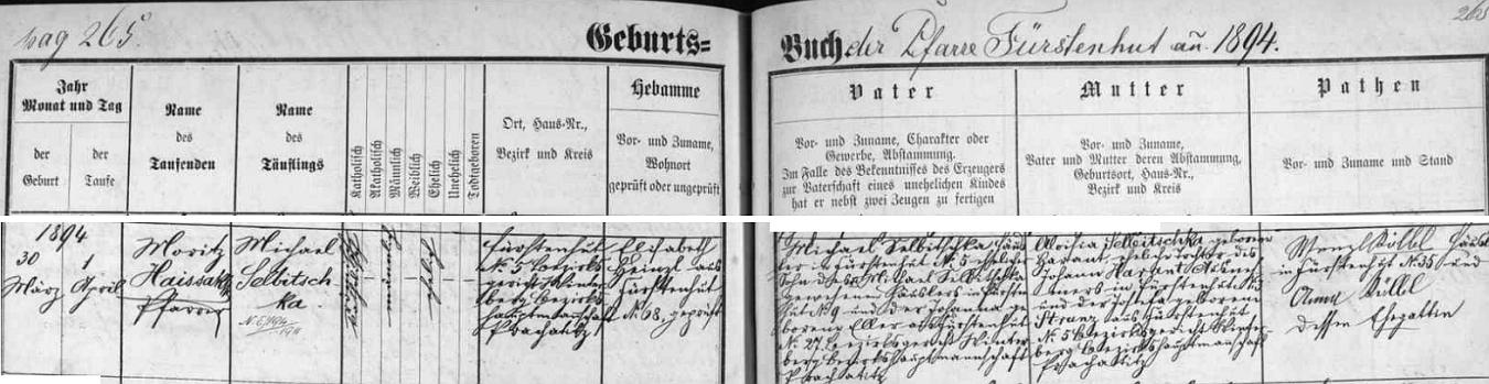Záznam o jeho narození a křtu v matrice farní obce Knížecí Pláně