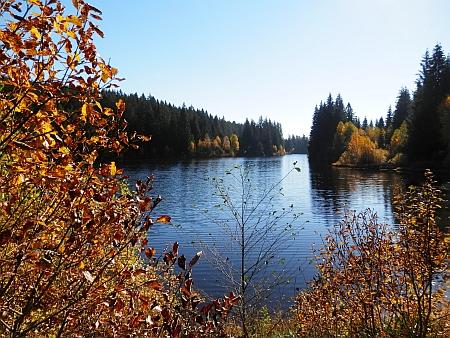 Pohořský rybník (Jiřická nádrž)