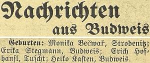 """Budweiser Zeitung ve """"Zprávách z Budějovic"""" informoval ojejím narození"""