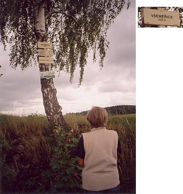 Turistické značky na bříze u cesty: z tolika šumavských osad vlastně téměř to jediné, co zbylo, jako tady zVšeměřic