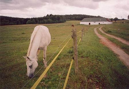 Jedna z chalup, které unikly zkáze Všeměřic, na snímku z roku 2007
