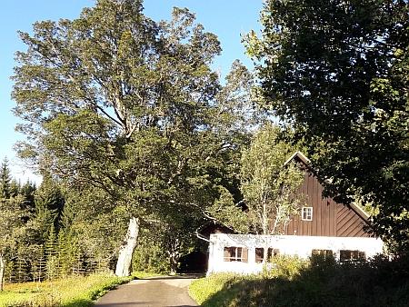 Jediný dochovaný dům ve Švajglových Ladech na snímcích z roku 2017