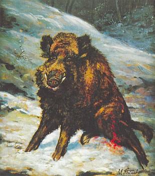 Jeho obraz střeleného divokého kance z výstavy šumavských malířů v Pasově