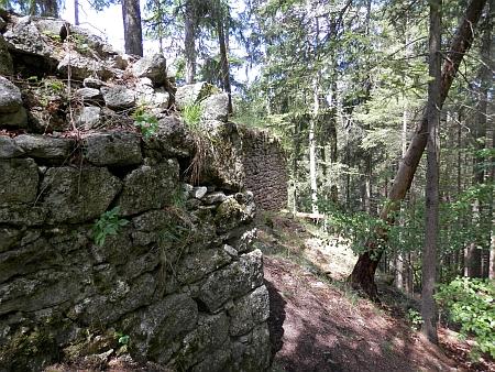 Zřícenina hradu Sokolčí (viz i Heinrich von Freiberg)