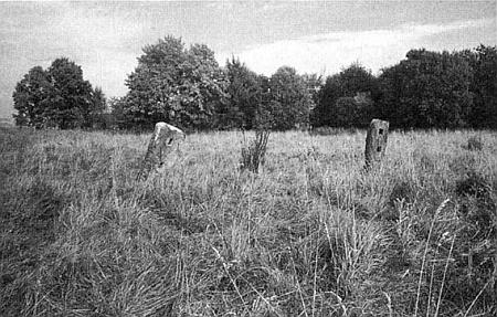 Co zůstalo z Horní Borkové (Fleißheim) při Lipenském jezeře na snímku z roku 1990