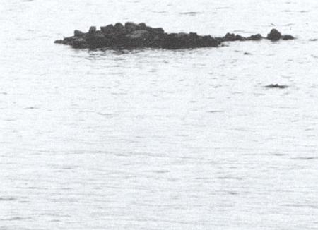 Dva snímky dolnovltavického kostela - z ledna 1959 a těsně předtím, než byl na Velký pátek o Velikonocích téhož roku vyhozen do povětří, poslal Johann Studener do redakce krajanského měsíčníku spolu s vlastním záběrem trosek na dně Lipenského jezera, jak vystoupily na jeho hladině při nízkém stavu vody 20. srpna roku 1990 (viz iRosa Studenerová)