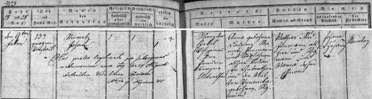 """Podle záznamu českobudějovické matriky narodil se jako Johann Niemetz na Pražském předměstí čp. 134 a jako manželský syn Lannova """"šífmana a hlubockého poddaného"""" Jakoba Schweydy byl legitimizován až otcovým sňatkem sAnnou, rozenou Niemetzovou, dcerou podruha a nádeníka Laurenze Niemetze a Veroniky, roz. Sigmundové"""