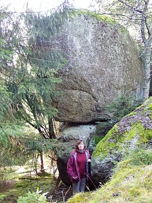 """Zarostlá """"Kamenná hlava"""" na snímcích šumavského autora Romana Kozáka z listopadu 2007..."""