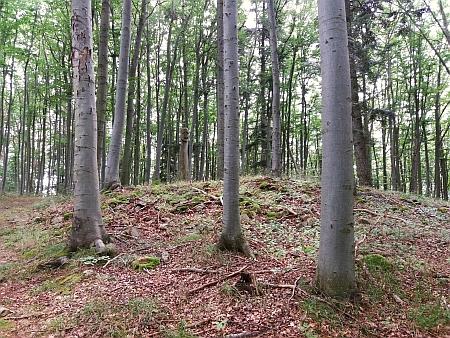 Na Stržíšku bylo v roce 2000 objeveno keltské hradiště