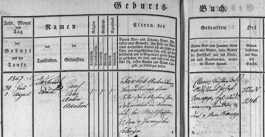 Záznam z českobudějovické matriky svědčí o původu otcově z Bernartic u Milevska (jeho matka a chlapcova babička byla rozená Celerýnová), novorozencova matka pocházela z významné budějovické jazykově německé rodiny Knappovy