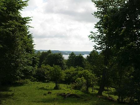 Pohled z Pestřického vrchu