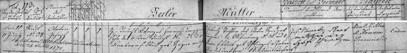 Záznam o jeho narození a křtu dne 11. června 1837 - rodiči dítěte byli Wenzel Teuchl a jeho žena Elisabeth, jejíž matka byla dcerou c.k. krajského komisaře v Táboře
