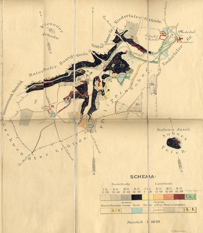 ... a Terčino údolí opodál i s klasifikací jeho dřevin