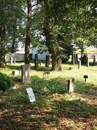 Záběr z českobudějovického židovského hřbitova v roce 2017