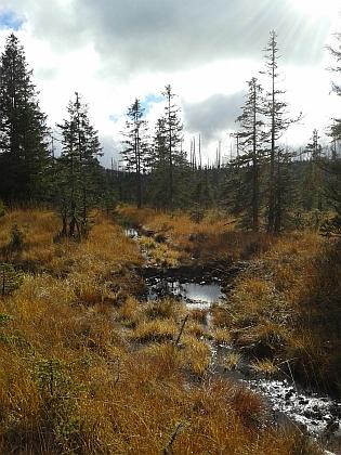 Jeden z přítoků, napájejících Roklanský potok