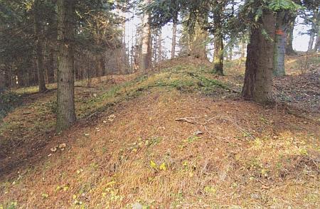Fortifikace hradiště na vrchu Radiš