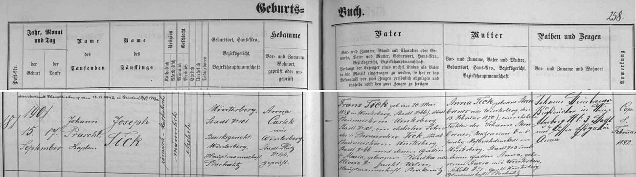 """Narodil se ve Vimperku čp. 101 jako syn zdejšího stavitele Franze Ticka (i jeho otec Bernardin Tick byl zde městským stavitelem, matka Maria byla roz. Roučková ze Lčovic) a jeho ženy Anny, dcery majitele zdejší proslulé """"dvorní knihtiskárny"""" Johanna Steinbrennera a Anny, roz. Sewerové z Vimperka - podle přípisu nahoře vlevo se Josef Tick dne 13. listopadu 1942 oženil v hornofalckém Weidenu, kde po válce, jak víme, i zemřel"""
