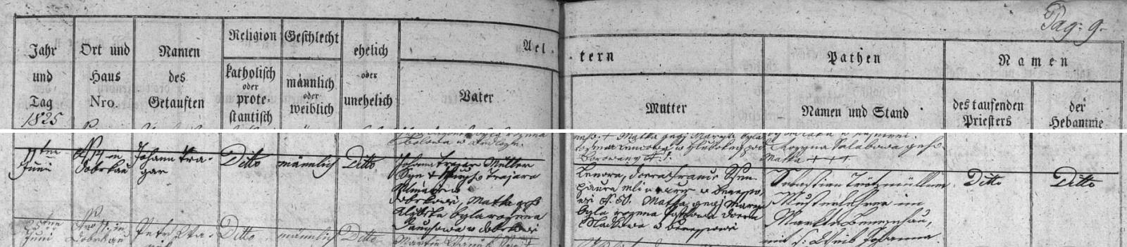 """Podle záznamu v křestní matrice farní obce Besednice narodil se 11. června roku 1825 v Dobrkově čp. 14 mlynáři Johannu Trajerovi (ten je tu psán po německu i s označením svého povolání), synu česky psaného Jiřího Trajera """"Mlináře w Dobrkowě, Matka geho Alžběta byla rozena Dauchowa w Dobrkowě"""" a jeho ženě Lenoře, která je tu česky označena jako """"dcera France Schengaura mlinaře w Benessowě N. 50. Matka gegj Marija byla rozena Postlowa dcera sladkowa w Benessowě"""""""