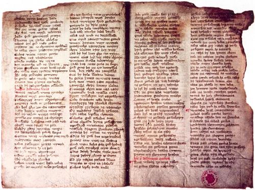 Tzv. budějovický zlomek Alexandreidy, objevený F.X. Illingem