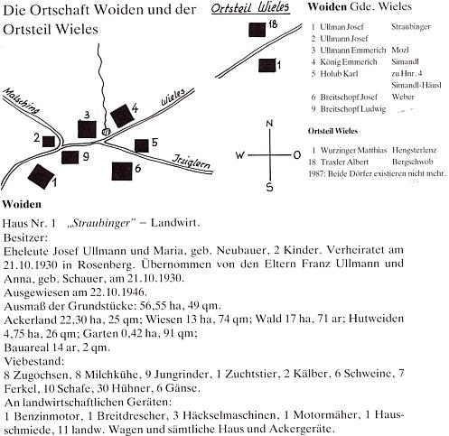 """Plánek osady Vojtín s popisem Ullmannových stavení čp. 1, zvaného """"Straubinger"""" (viz i Franz Ullmann)"""