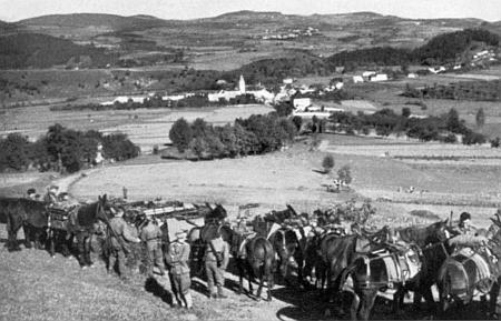 Horské dělostřelectvo wehrmachtu shromážděné v říjnu 1938 před Záblatím na snímku z nacistické propagační publikace