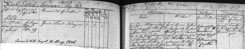 ... podle borovanské matriky se narodil na borovanském zámku čp. 79 Johannu Wagnerovi a jeho ženě Anně, roz. Pinterové