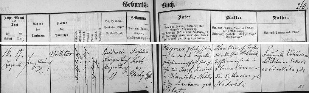 Záznam v českobudějovické matrice prozrazuje český původ jeho rodičů z Blanice u Netolic a Strunkovic nad Blanicí i s českými příjmeními Viktorových prarodičů