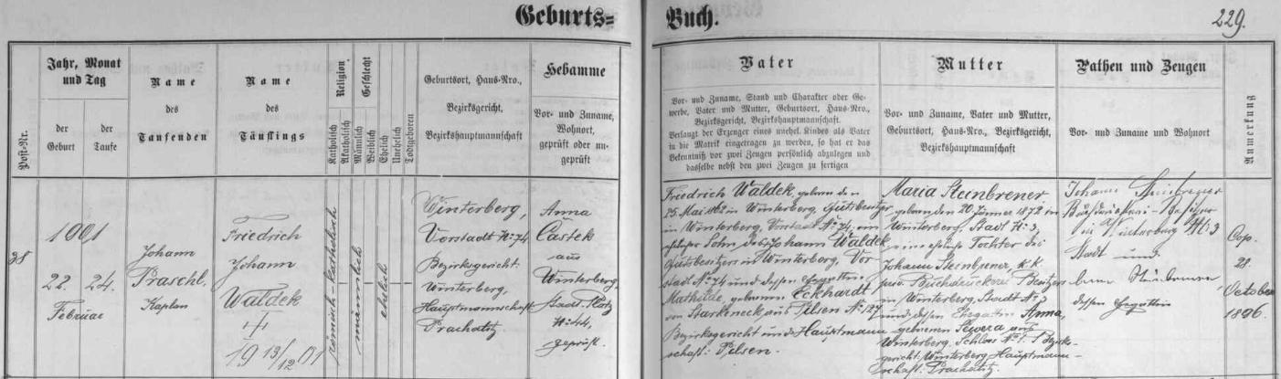 Z tohoto záznamu vimperské křestní matriky o narození jeho záhy ovšem zemřelého vnuka Friedricha Johanna vysvítá, že Waldekovi aSteinbrenerovi byli spřízněni sňatkem Waldekova syna Friedricha (Fritze) Waldeka s dcerou Johanna Steinbrenera Marií