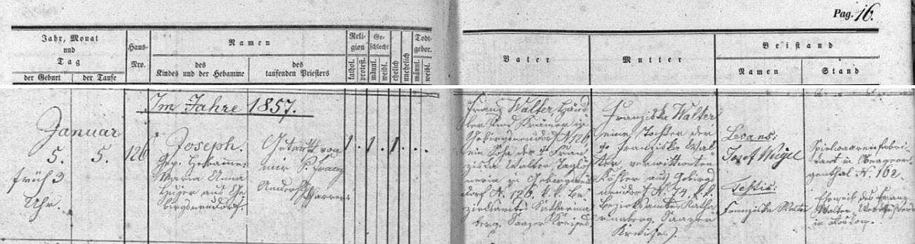 Podle tohoto záznamu křestní matriky farní obce Nová Ves v Horách byl ve zdejším kostele sv. Michaela archanděla dne 5. ledna roku 1857 farářem Franzem Anderschem pokřtěn téhož dne v domě čp. 126 narozený Joseph Walter, jehož otec Franz Walter byl zdejším domkářem a kramářem, jinak nemanželským synem Franzisky Walterové, nádenice v témže čp. 126 v Nové Vsi v Horách, tehdejší okr. Hora sv. Kateřiny, Žatecký kraj, chlapcova matka Franziska byla pak rovněž nemanželskou dcerou Franzisky Walterové, ovdovělé Köhlerové z Nové Vsi v Horách čp.74 - kmotrem (conpater, levans) dítěte se stal majitel továrny na hračky v Horním Jiřetíně (Ober-Georgenthal) Josef Weigel, kmotrou (testis) pak Franziska Walterová, manželka dílovedoucího Franze Waltera v Rostkově (zde Roskow)