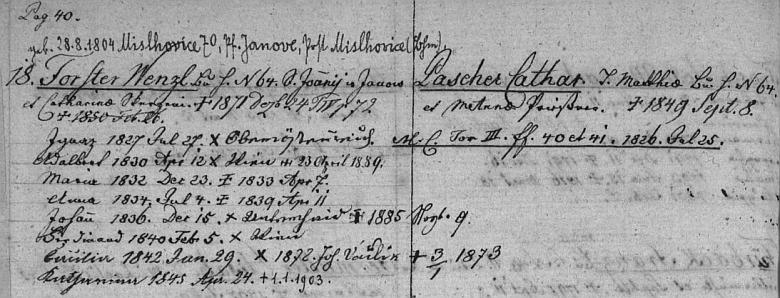 Záznam matriky farní obce Dolní Dvořiště o rodině otcovy prvé ženy, z něhož vyplývá, že Cäziliin otec Wenzel Forster se narodil v Myslkovicích, farnost Janov, okres Tábor