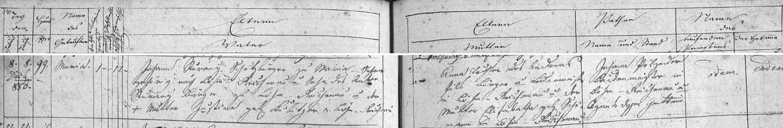 Záznam křestní matriky farní obce Rychnov nad Malší o narození Marie Sturanýové, druhé otcovy ženy, dne 8.července roku 1850 na adrese U Svatého Kamene (Maria-Schnee) čp. 99