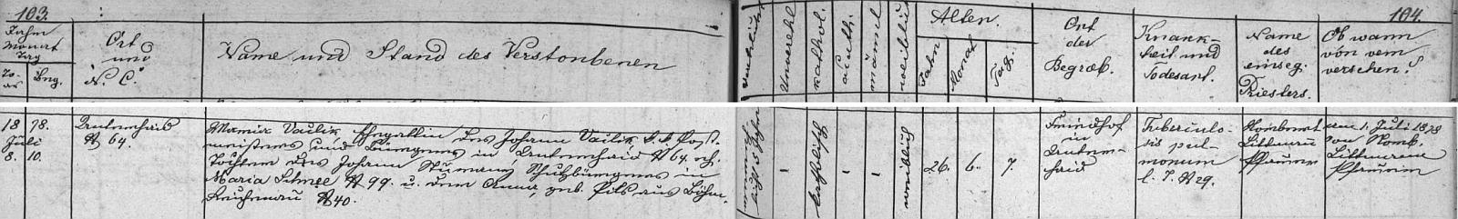 Podle tohoto záznamu úmrtní matriky farní obce Dolní Dvořiště skonala tu otcova druhá žena Maria ve věku 28 let (údaj o věku v úmrtní matrice je evidentně chybný) na tuberkulózu dne 18. července roku 1878 a byla v Dolním Dvořišti i pochována