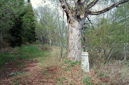 Kříž při staré cestě z někdejších Horek do Mechova