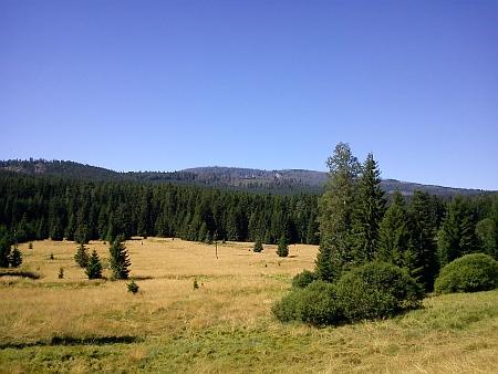 Pohled na Plechý z Jeleního údolí